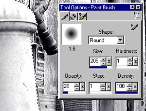 fig 3 Paint Brush Settings Image Courtesy of Jasc