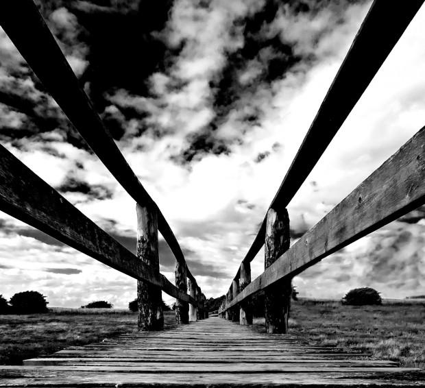 bridgeBW